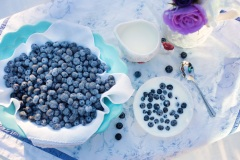 blueberries-1576409